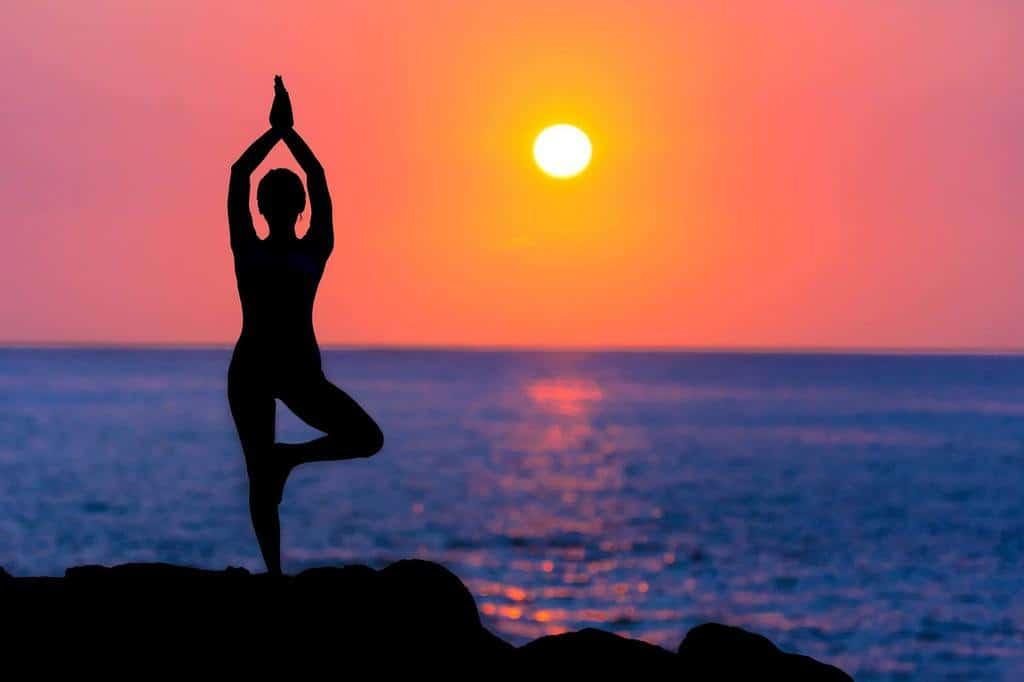 yogi on the ocean